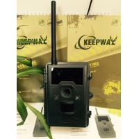 Wholesale SMTP / GPRS Function 12MP MMS Trail Camera , Digital Wildlife Camera from china suppliers