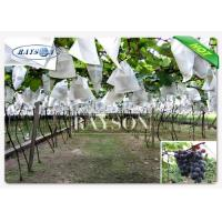 Wholesale SGS Certificate Breathable Spunbond Non Woven Cultivation Bag with UV Treated for Farmland from china suppliers