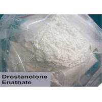 Wholesale Drostanolone Masteron Enanthate Anabolic Steroid Powder Mass Muscle Gainer from china suppliers