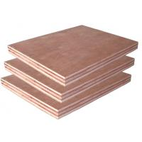 Wholesale Low Price Okoume/Bintangor Plywood from china suppliers