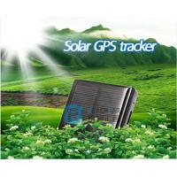 Wholesale Reachfar solar powered cow gps tracker waterproof RF-V26 from china suppliers
