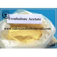 Wholesale 99.9% USP Trenbolone Acetate Cutting Cycle Steroids For Muscle Building from china suppliers