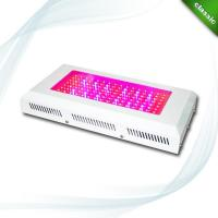 Wholesale 120W LED Grow Light (CDL-G120W-A1) from china suppliers