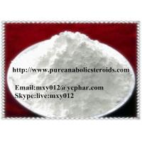 Wholesale White Crystal Pharmaceutical Intermediates Hydrochloride Procaine HCl for Pain Relief , CAS 51-05-8 from china suppliers