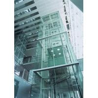 Wholesale Maximum Travelling Floor 30F Exterior Glass Elevator / Panoramic Lift from china suppliers