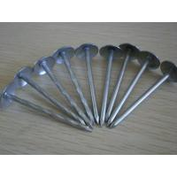 "Wholesale 11 Gauge 1.25"" Galvanized Steel Roofing Nails Grip Rite with Smooth Shank from china suppliers"