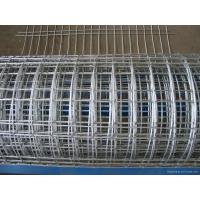 Quality Large - Diameter Welding Wire Mesh , Silver Hotdipped Galvanized Welded Wire Mesh for sale