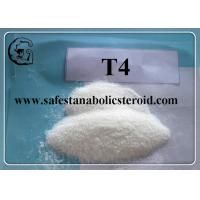 Wholesale T4 Fat Loss Hormones Chemical Raw Material CAS 55-03-8 Levothyroxine Sodium / T4 from china suppliers