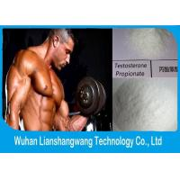 Wholesale 99% Injectable Androgenic Anabolic Steroids Testosterone Propionate Androlin CAS 57-85-2 from china suppliers