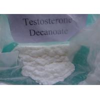 Quality 99% Pharmaceutical Steroid Powder Testosterone Decanoate For Muscle Mass for sale