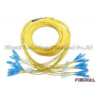 Wholesale Breakout Type Multicore Fiber Optic Jumper , 12 Fibers Fan out Patch Cord SC To SC from china suppliers