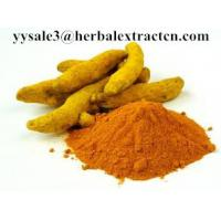 Wholesale HOT SELLING Turmeric extract,curcumin 95%,CAS .:458-37-7,Lipid-lowering,Anti-inflammatory,  Chinese MANUFACTURER from china suppliers
