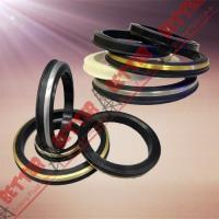 Wholesale SPM FMC WECO Hammer Union Seal Viton lip seal brass back from china suppliers