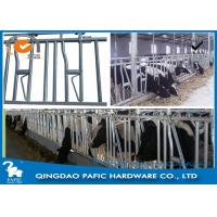 Wholesale 1050mm Height Locking Feed Barriers for 8 Cattle in Pasture from china suppliers