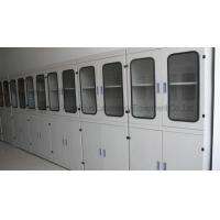 Wholesale Designing and Producing Laboratory Reagent Cabinet For Professional Laboratory Use from china suppliers