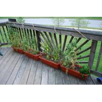 Wholesale Outdoor Decking Bamboo Flooring from china suppliers