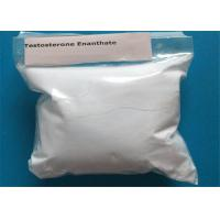 Enanthate Powder Testosterone Anabolic Steroid Raw Marerial CAS 315-37-7