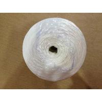 Wholesale Split Film Twisted String PP  Twine for Greenhouse / 6000D-9000D PP Packing Rope from china suppliers