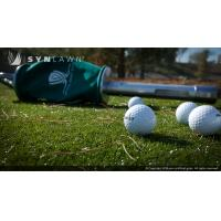 Wholesale Make Your Own Golf Putting Green from china suppliers