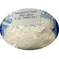Wholesale Anti Estrogen Steroids Tamoxifen Citrate CAS 54965-24-1 with High Purity from china suppliers