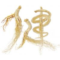 Wholesale Ginseng Root Polysaccharides from china suppliers