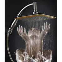 China China Ningbo cixi  factory 9-inch handheld-head shower with two functions one as hand shower and other head shower new on sale