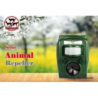 Wholesale Graden ultrasonic solar animal repeller ASF-006 dog cat deer repeller by ultrasonic signal and flashing  frighten animal from china suppliers