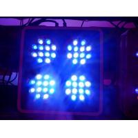 Buy cheap Apollo-4 LED Coral Reef Aquarium Lights with 2 Switches and 2 Power Cords (Apollo4) from wholesalers
