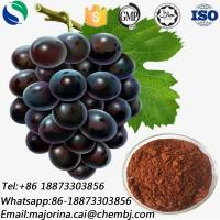 China Grape Seed Extract for Food Additive Skin Whitening CAS 84929-27-1 on sale