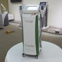 Wholesale strong cooling 2 handles working simultaneously cryolipolysis machine NBW-C122 from china suppliers