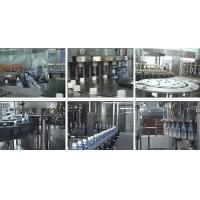 Wholesale Automatic Water Filling Machine , Water Bottle Filling Equipment 1000BPH - 20000BPH from china suppliers