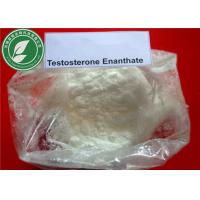 Wholesale Injectable Steroid Powder Testosterone Enanthate For Muscle Mass CAS 315-37-7 from china suppliers