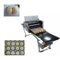 Wholesale Multiple Nozzle High Resolution Printer For Food Industry Egg Date Stamp Machine  from china suppliers