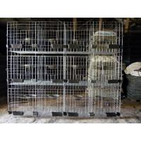 Wholesale H Type Pigeon Cage Hot Sale in Saudi Arabia Market from china suppliers