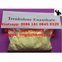 Wholesale Enterprise Standard Raw Tren Power Pharmaceutical Anabolic Steroids Trenbolone Enanthate from china suppliers