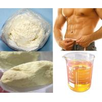 Wholesale Yellow Muscles Trenbolone Enanthate Powder 99% Anabolic Steroids from china suppliers