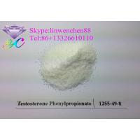 Wholesale Testosterone Phenylpropionate Bodybuilding Steroid Testosterone Powder white powder from china suppliers