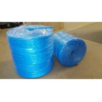 Wholesale 3mm 4mm Farm Use Twisted Banana Twine Hay Baler Rope Blue PP Baler Twine from china suppliers
