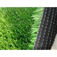 Wholesale PP Synthetic / Clusters /Artificial Grass Lawn For Sports Leisure from china suppliers