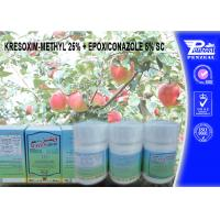 Wholesale KRESOXIM-METHYL 25% + EPOXICONAZOLE 5% SC Pesticide Mixture 143390-89-0, 106325-08-0 from china suppliers