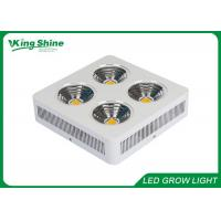 Quality High Power 600W Cree Led Grow Lights Plant Growing Lamps Energy Saving for sale