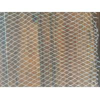 Wholesale Green HDPE Anti Bird Netting , Animal Proof Fencing For Agriculture Farm from china suppliers
