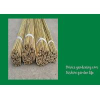 Wholesale 6 Foot Strong Long Bamboo Garden Stakes Nature Straight 6 - 8mm from china suppliers