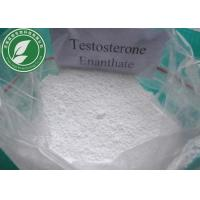 Wholesale Raw Steroid Powder Testosterone Enanthate CAS 315-37-7 With Safe Delivery from china suppliers