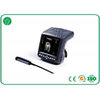 Wholesale Palm - Size Hand Held Ultrasound Machine , Animal Ultrasound Scanner TFT LCD from china suppliers