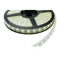 Quality Warm white 24 Volt Waterproof 2835 LED Strip Epistar 60leds/m high power for sale