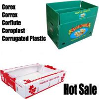 Buy cheap PP Corrugated Plastic Sheet/PP Hollow Sheet/Reusable PP Corrugated Fruit Boxes from wholesalers