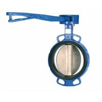 Wholesale Custom Ductile Cast Iron Lug And Wafer Type Butterfly Valve DN40 - DN600 from china suppliers