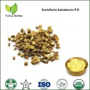 Wholesale baicalin 85%,pure natural baicalin,baikal skullcap extract baicalin,98% baicalin from china suppliers