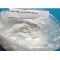 Wholesale Testosterone Enanthate Test E anabolic steroid powder CAS 315-37-7 from china suppliers